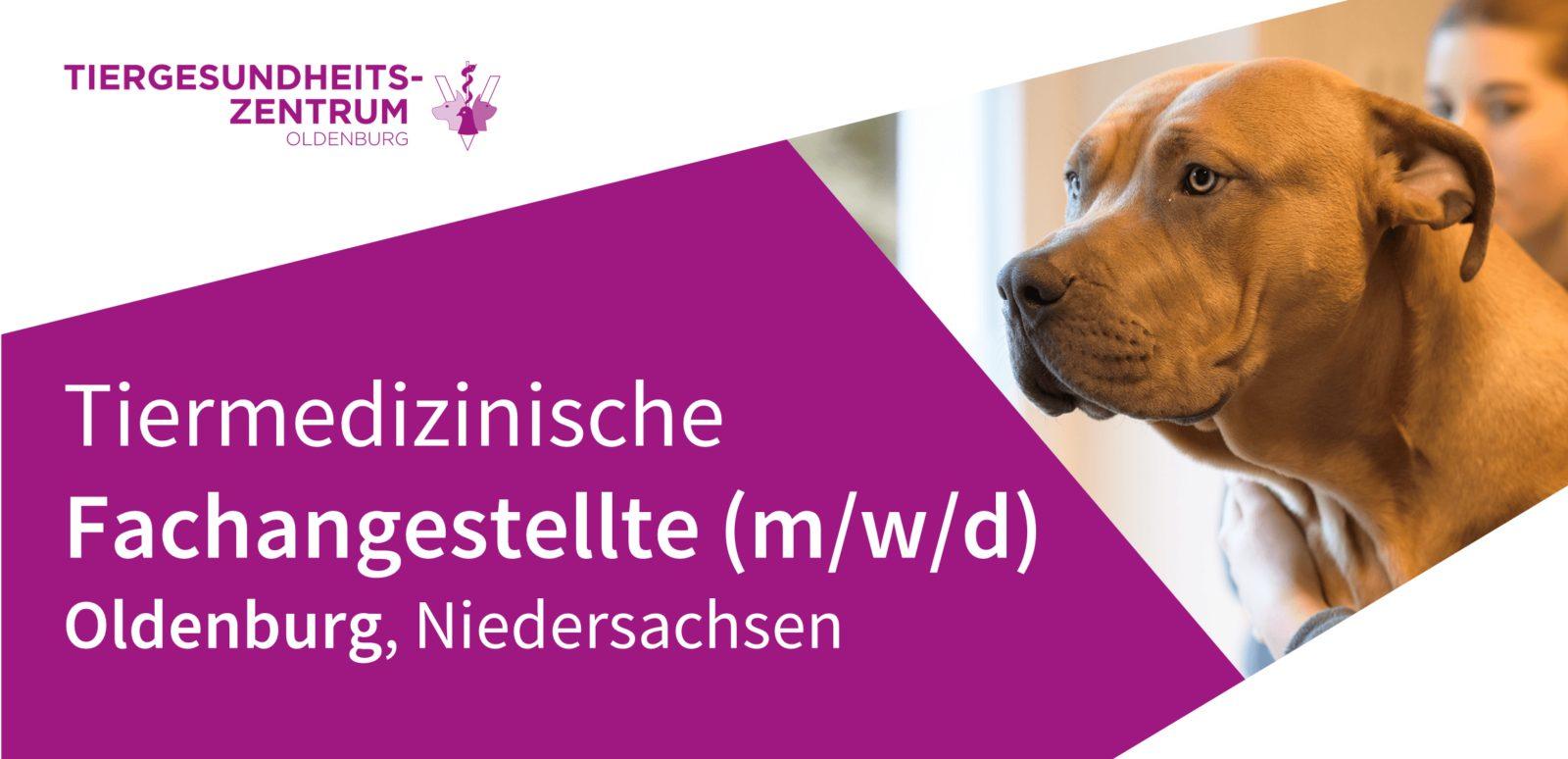 Tiergesundheitszentrum Oldenburg - TFA (m/w/d) als Nachtschwärmer in Oldenburg, Niedersachsen gesucht