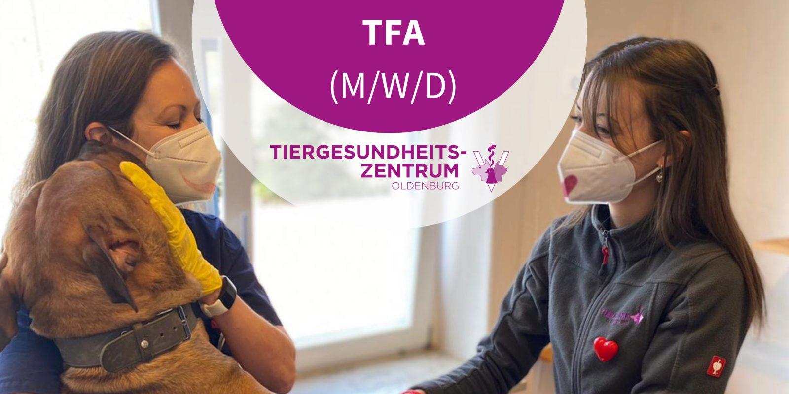 Tiergesundheitszentrum Oldenburg - TFA (m/w/d) in Oldenburg, Niedersachsen gesucht (Vollzeit)
