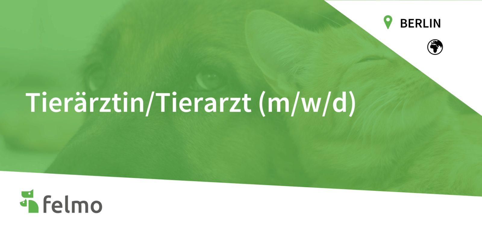 felmo GmbH - Tierärztin/Tierarzt (m/w/d) in Berlin gesucht