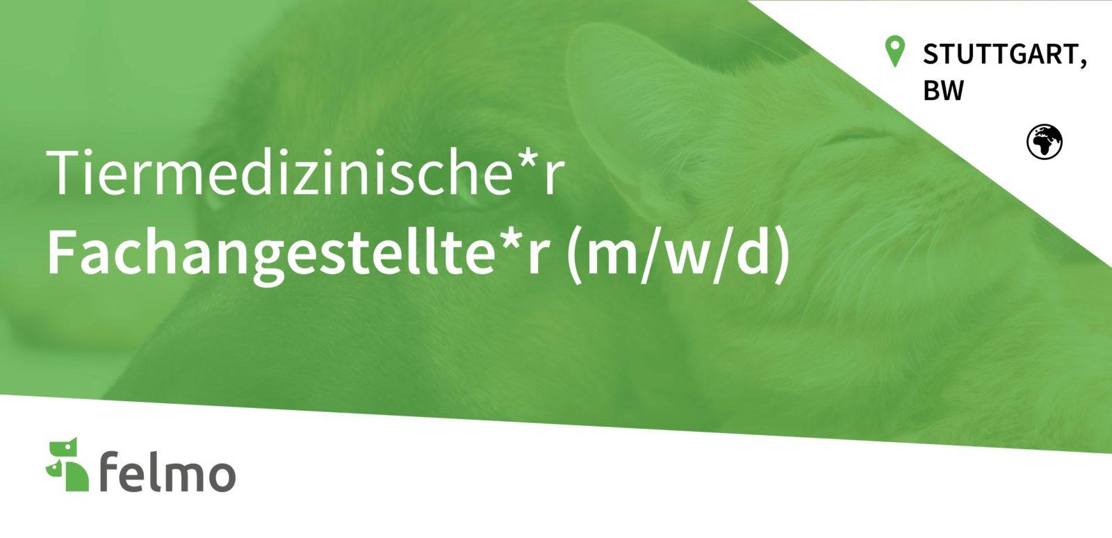 felmo GmbH - TFA (m/w/d) in Stuttgart gesucht