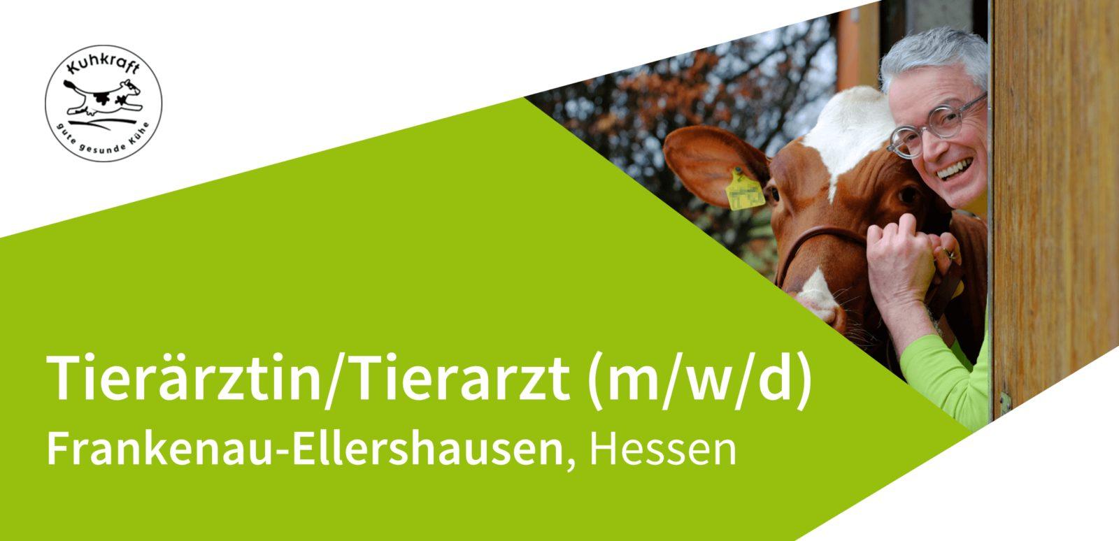 Kuhkraft - gute, gesunde Kühe - Tierärztin/Tierarzt (m/w/d) in Nordhessen gesucht