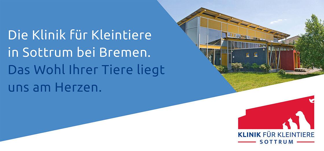Klinik für Kleintiere Sottrum - Fachtierarzt für Kleintiere (m/w/d) in Sottrum bei Bremen