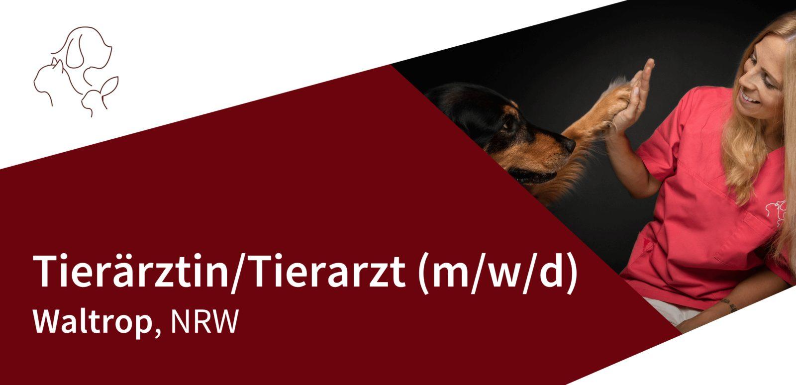 Kleintierpraxis Dres. Leps - Tierärztin/Tierarzt (m/w/d) in Waltrop gesucht