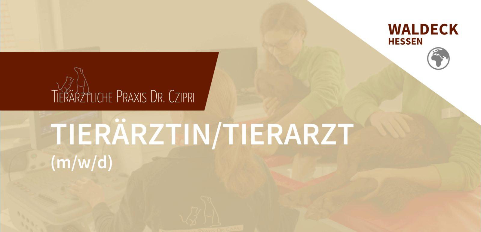 Tierärztliche Praxis Dr. Czipri - Tierärztin/Tierarzt (m/w/d) in Bad Zwesten gesucht