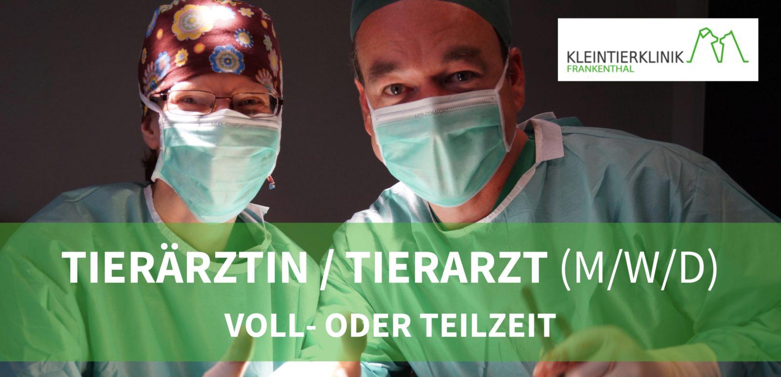 Kleintierklinik Frankenthal GmbH - Tierärztin/Tierarzt (m/w/d)  in Vollzeit/Teilzeit