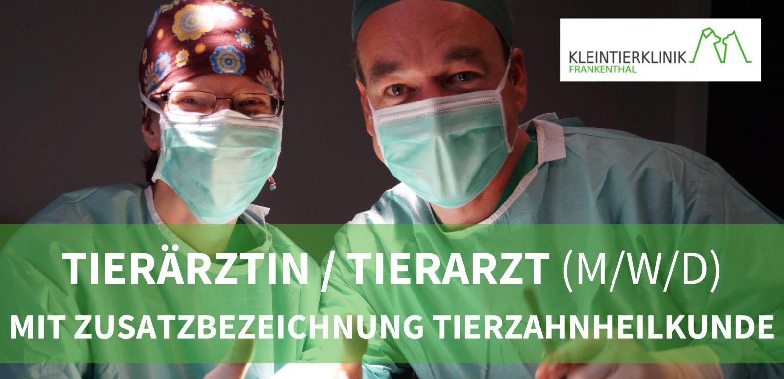 Kleintierklinik Frankenthal GmbH - Tierärztinnen/Tierärzte (m/w/d) mit Erfahrung und/oder Interesse am Bereich Tierzahnheilkunde für den Bereich Dentalmedizin/Ambulanz