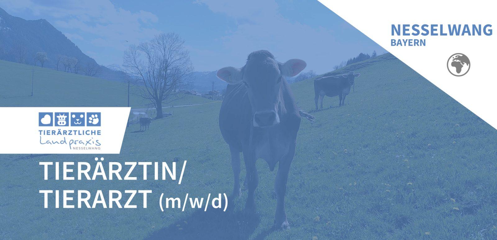 Tierärztliche Landpraxis Nesselwang GbR - Tierärztin/Tierarzt (m/w/d) in Nesselwang gesucht
