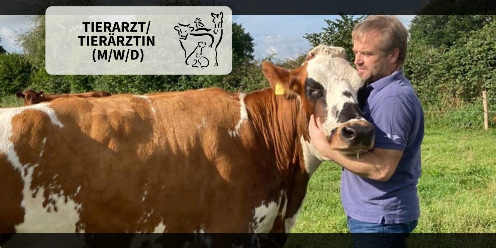 Tierärztliche Gemeinschaftspraxis in Kropp - Tierarzt (m/w/d) für Nutztierbereich in Kropp, Schleswig-Holstein