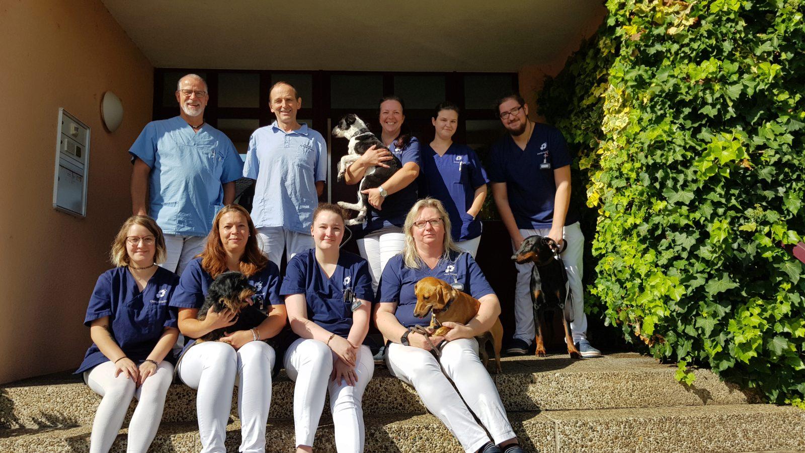 Tierärztliche Gemeinschaftspraxis für kleine Haustiere - Assistenzarzt/ärztin mit Aussicht auf Teilhaberschaft gesucht