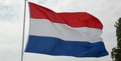 Veti-Studenten Im Ausland: Praktikum In Der Pferdeklinik Utrecht, Holland