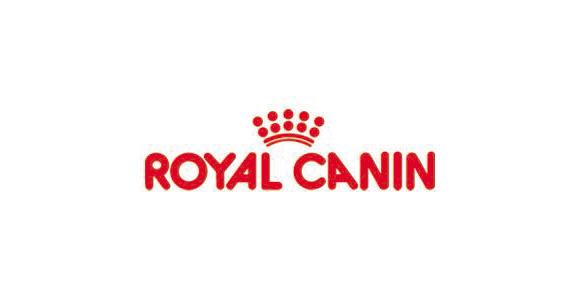 Tierärzte Im Beruf – Sales Scientific Support Bei Royal Canin