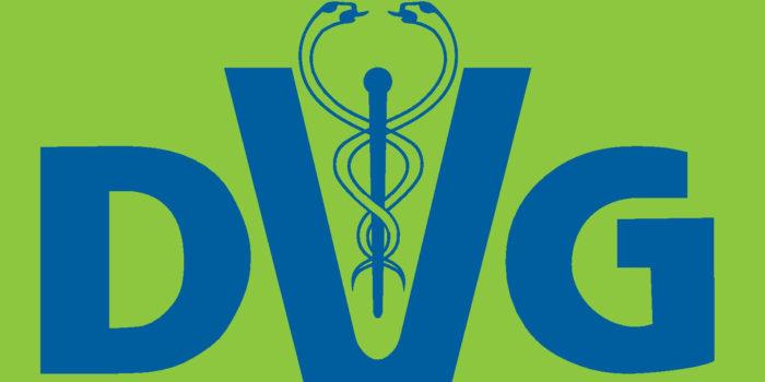 DVG Logo Blaue Schrift Auf Gruen Klein