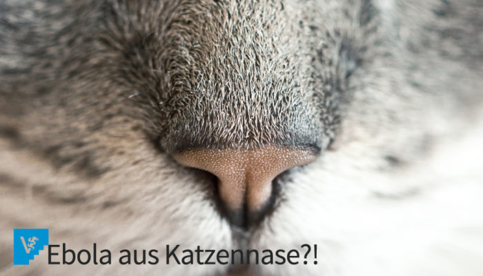 Ebola Und Haustiere – Von Fehlendem Wissen Und Reaktionen Aus Angst