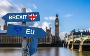 Keep calm and Brexit – Wie geht es weiter für Tierärzte im Brexit?