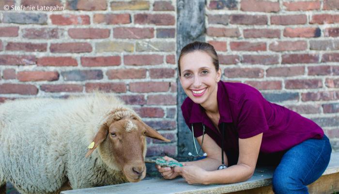 Tierärzte Im Beruf: Tierärztin Und Autorin