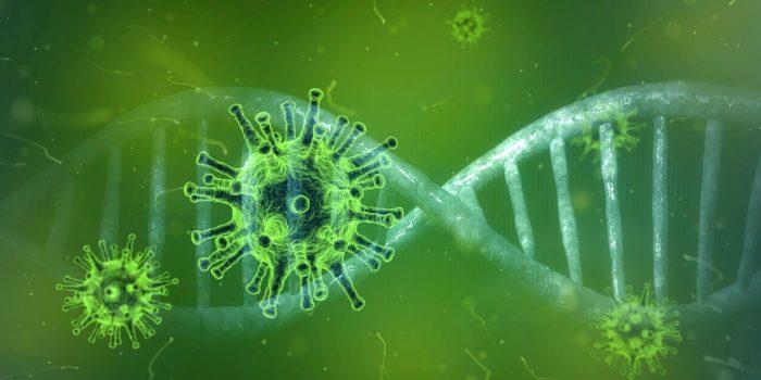 Coronavirus 4833754 1280