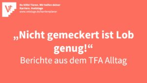 Von ausgelernten TFA und denen, die es werden wollen