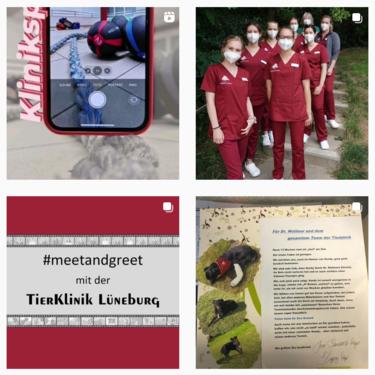 Tierklinik Lüneburg bei Instagram
