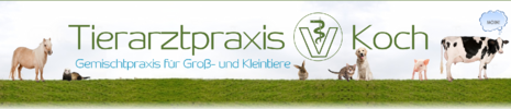Tierarztpraxis Koch - Logo