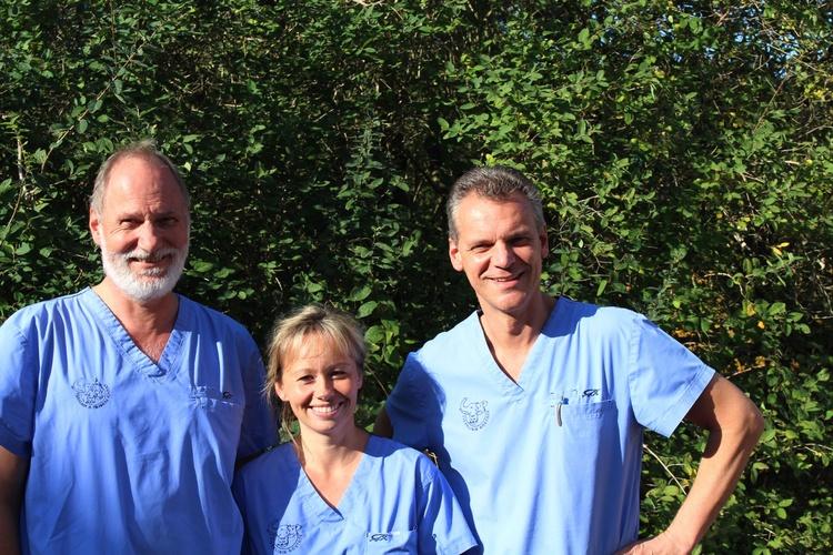 Tierklinik Rostock - unsere Vision