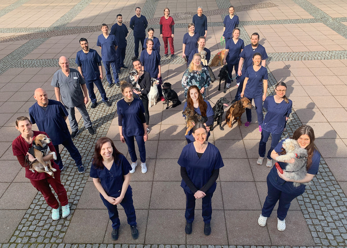 Tierarzt-Praxis Lutz Borghardt - unsere Vision