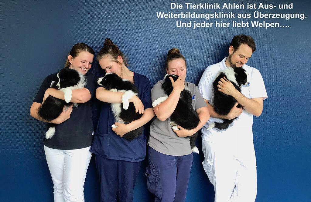 Tierärztliche Klinik Ahlen - unsere Vision