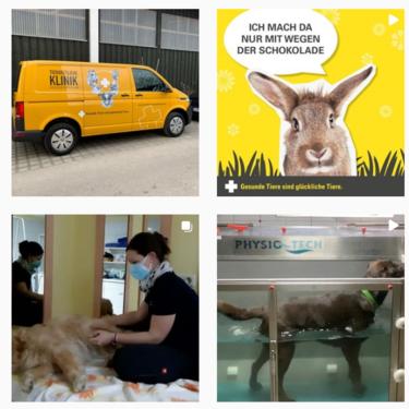 Tierärztliche Klinik Gessertshausen Altano GmbH bei Instagram