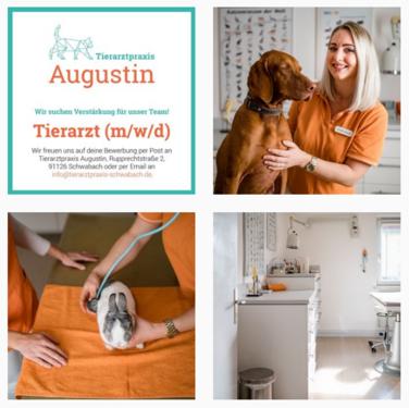 Tierarztpraxis Augustin Schwabach bei Instagram