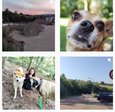 Kleintiercentrum Köllertal bei Instagram